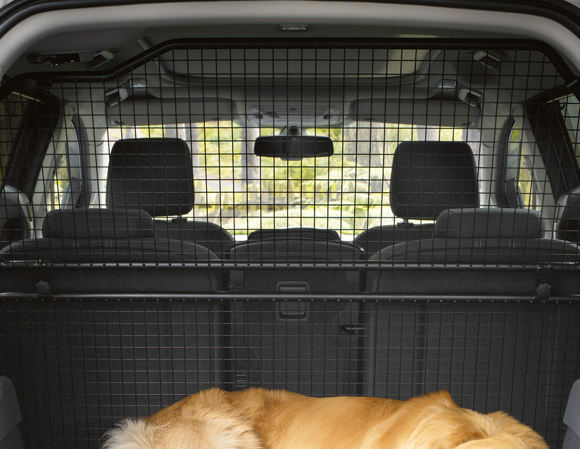 ORIGINAL Ford Absperrgitter Hundeschutzgitter Gitter GRAND C-MAX oben 1700739